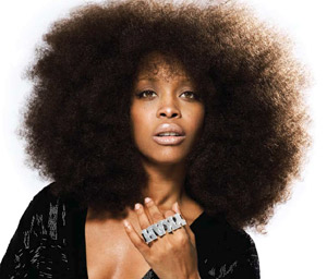 Erykah Badu should strip naked someplace sexier than an assassination route.